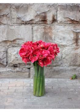 Красные амариллисы в вазе
