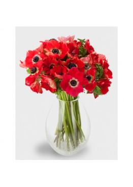 Красные анемоны в вазе
