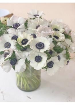 75 белых анемонов в вазе