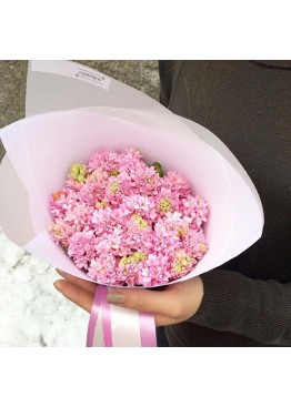 Роскошные розовые гиацинты