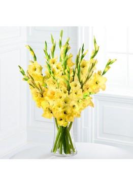 19 желтых гладиолусов