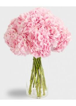 Розовые гортензии в вазе