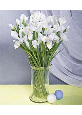 Белые ирисы в вазе