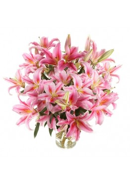 25 розовых лилий