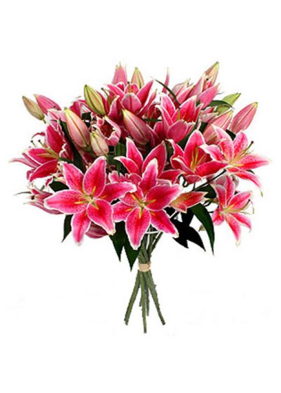 15 розовых лилий
