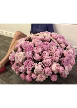 Корзина из 101 розового Пиона Сара Бернар