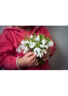 Первые цветы для любимой