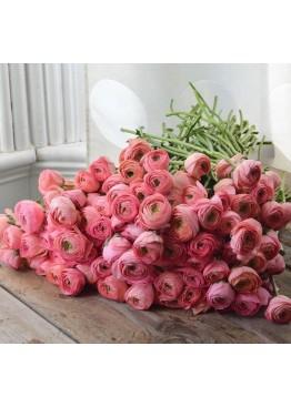 Розовые ранункулюсы Клуни поштучно