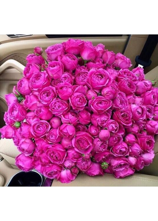 51 роза Мисти Баблз