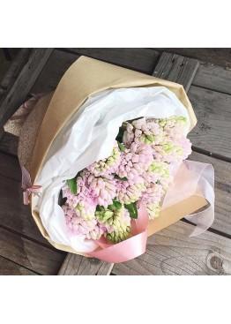 Розовые гиацинты для любимой