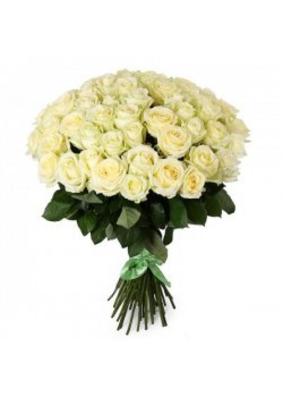51 белая роза высота 60 см.